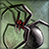 File:Spider.png