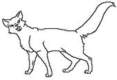 MWMedicatlf