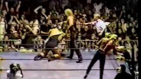 The Giant & Bret Hart vs