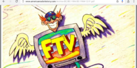 FTV (Lost 1980s Music Show)