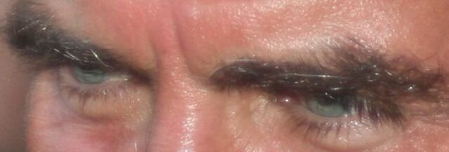 File:Jeff fahey - the most beautiful eyes in the world.jpg