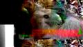 Thumbnail for version as of 18:46, May 22, 2006
