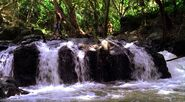 River1x24