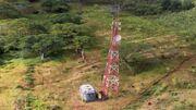 Radiotower233.jpg
