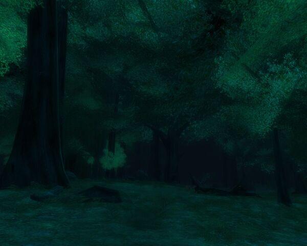 File:Old Forest.jpg