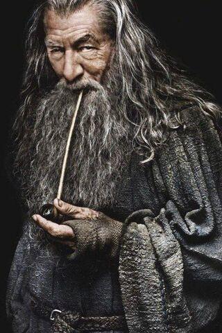 File:Gandalf the Grey profile.jpg