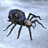 File:Shelob 4.jpg