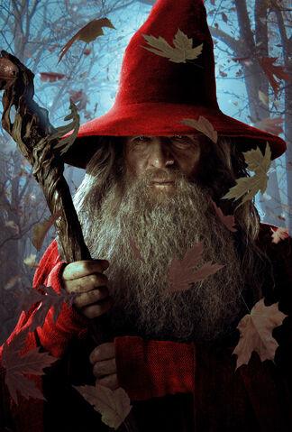 File:Gandalf the Red.jpg