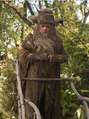 Radagast the Brown.PNG