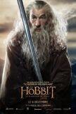 FR Desolation - Gandalf