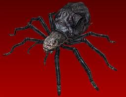 File:Giant Spider.jpg