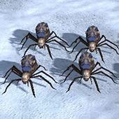 File:Spiderlingsa.jpg