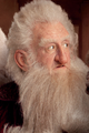Balin son of Fundin.png