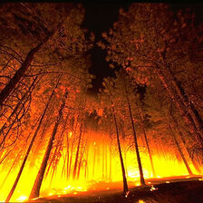 Ithilien burning