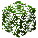 LeavesDatePalm