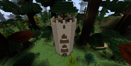 Wood-elven Tower Old