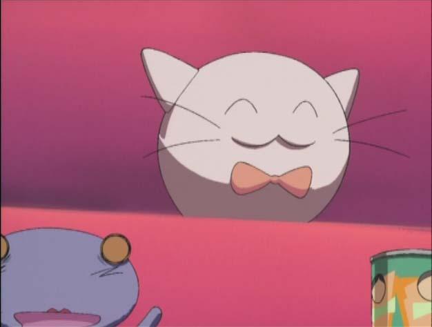 File:CatBall1.jpg