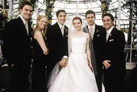 American Pie The Wedding 8023 Medium