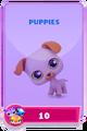 LittlestPetShopPetsRequiredPetsPuppies.png