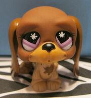 Lpshound