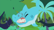 Shark chomps