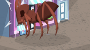 Ant bumps into the pet shop