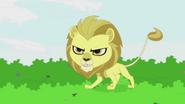 Lion appears