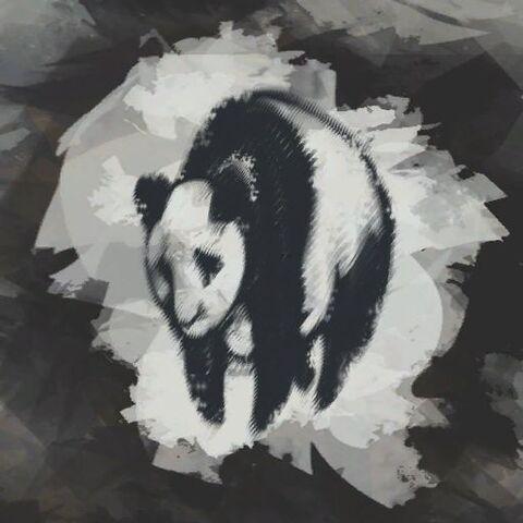 File:Env fv panda-pictogram.jpg
