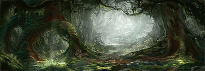 High Forest1