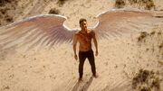 218 Lucifer with wings