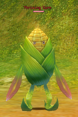 Thriving Corn