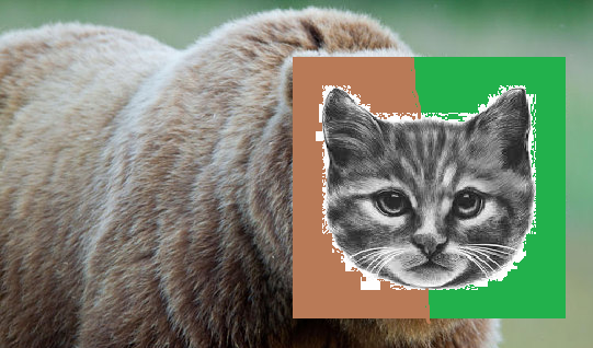 File:Bearcat lol.png