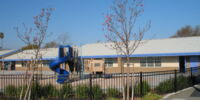 Miduna Beach Elementary School