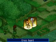 Crossguard