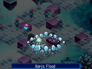 Kopinflood-3