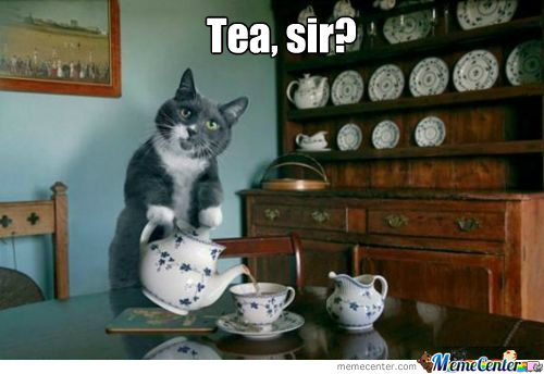 File:Tea cat.jpg