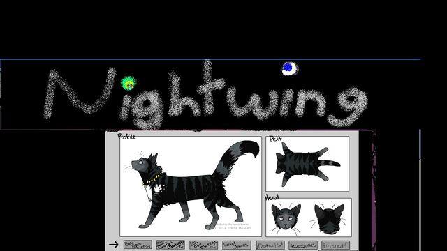 File:Nightwing profile.JPG