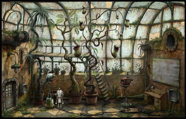 File:Flytrap plant - glasshouse.jpg