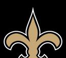 New Orleans Saints (2013)
