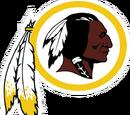 Washington Redskins (2013)