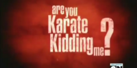 Are You Karate Kidding Me?