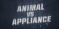 Animal vs. Appliance