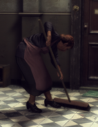 Cleaning Lady 2