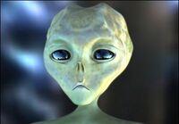 Am n1 alien