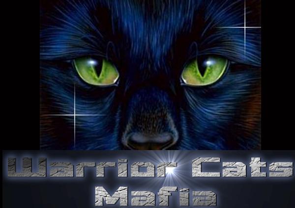 File:Warrior cats.jpg