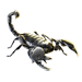 Item emperorscorpion 01