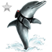 Item patroldolphin silver 01
