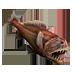 Item fangtoothfish 01