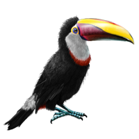 Huge item tocotoucan 01