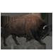 Item bison 01